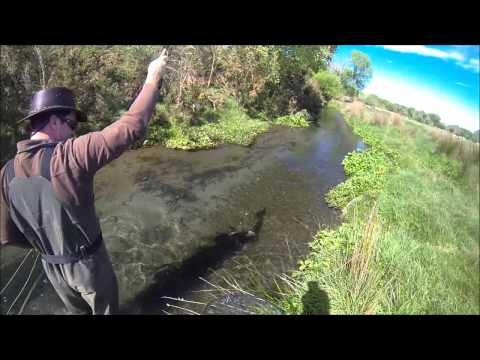 Australia Tourist having Fly Fishing lessons in New Zealand with Gary's Canterbury Fishing Guides
