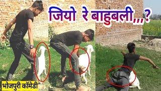 whatsapp video | funny comedy | bhojpuri  (2018)