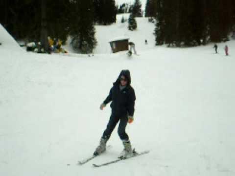 лыжы хохибрик 2008.12.14