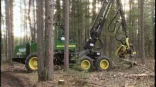 Forest for Sale (An Excerpt from MN History of the Land Ep. 5)
