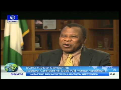 Boko Haram Ceasefire: Adefuye Confident All Sides Will Honour Agreement