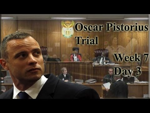 Oscar Pistorius Trial: Thursday 8 May 2014, Session 2