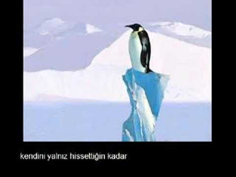 HER ŞEY SENDE GİZLİ