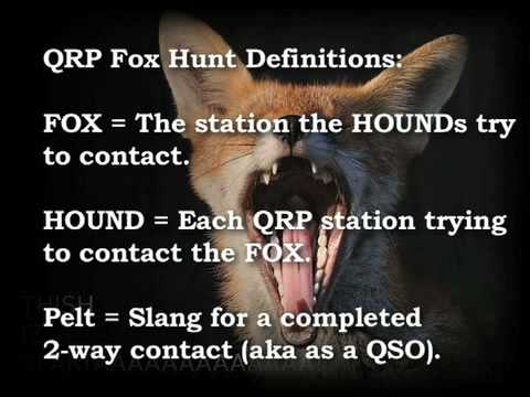 The QRP Fox Hunt - with History