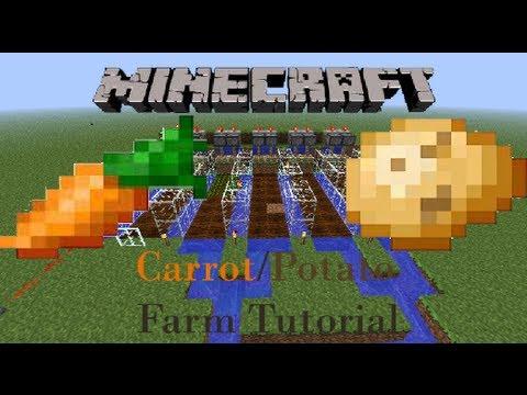 Semi Auto Carrot/potato Farm