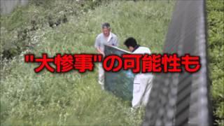 日本テレビ『スッキリ!!』で放送されました