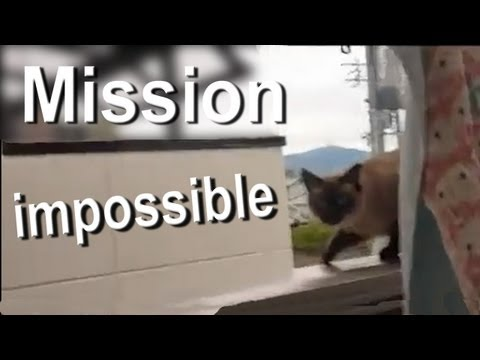 Mission Impossible video