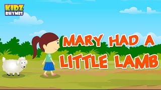 Mary had a Little Lamb Nursery Rhyme | Nursery Rhymes
