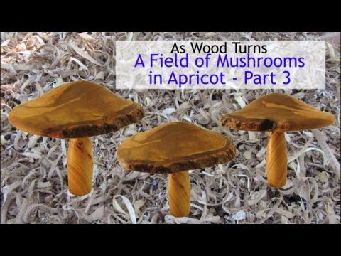 Woodturning A Field of Mushrooms (Part 3)