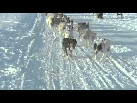 The Ice Hotel Sweden.flv