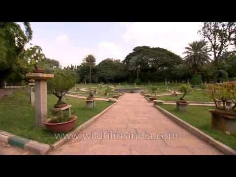 Bonsai park of Lal Bagh Botanical Garden