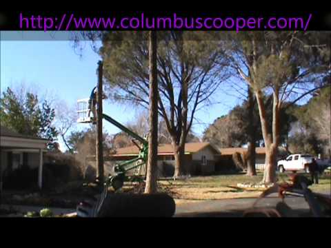 COOPERS LAWN CARE SERVICE ODESSA,TEXAS #2 - #432-653-1729