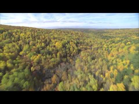 Passionate About a Healthy Forest Future in New Brunswick