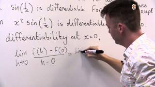 A function with Discontinuous Derivative (Ch4 Pr6)