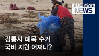 투R)강릉시 폐목 수거 국비 지원 어쩌나?