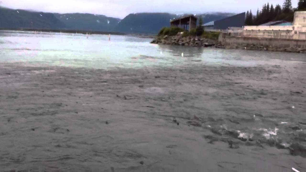 Solomon gulch fish hatchery youtube for Skyrim fish hatchery