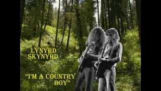 Watch Lynyrd Skynyrd Im A Country Boy video