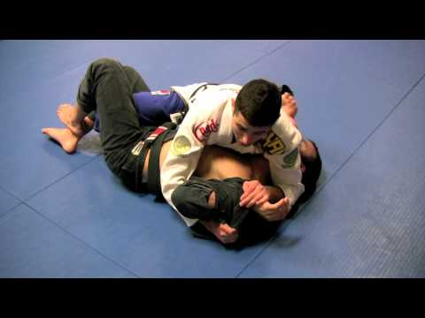 Caio Terra: Half-Guard Submissions