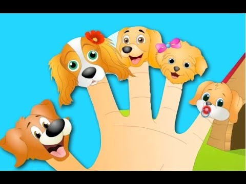 The Finger Family Dog Family Nursery Rhyme | Kids Animation...