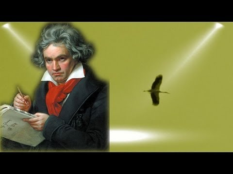 Ludwig van Beethoven - 5th Symphony 5 - Symphonie Nr. 5 / Best of Classical Music Period Playlist