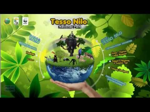 WWF Interactiv - Tesso Nilo National Park. Riau - Indonesia