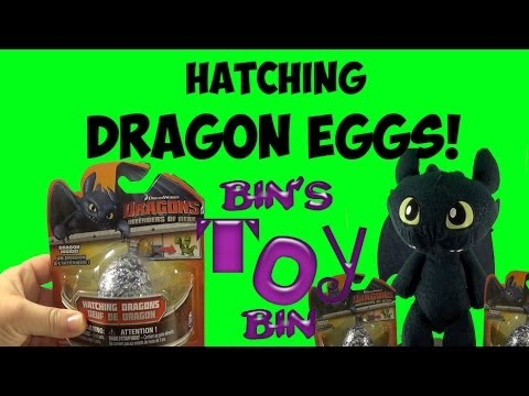 Hatching How to Train Your Dragon Mystery Eggs with Toothless! Review by Bin's Toy Bin