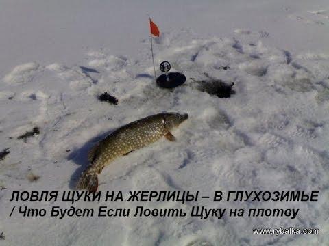 диалоги о рыбалке ловля щуки на жерлицы видео