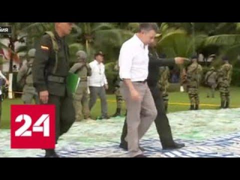 В Колумбии наркоторговцы спрятали рекордную партию кокаина среди бананов - Россия 24