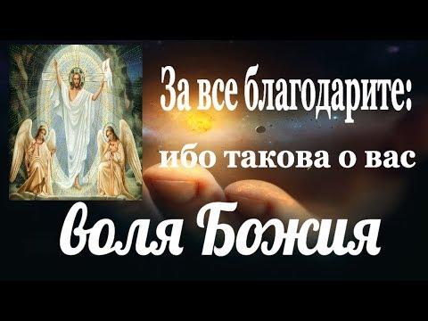 Принимать все как от Бога — это значит обладать несметными сокровищами. Пестов
