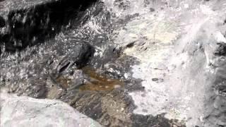 StoneIllusion - ViYoutube.com