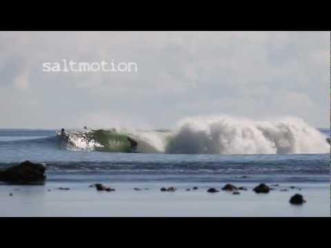 Saltmotion PNG November 2012