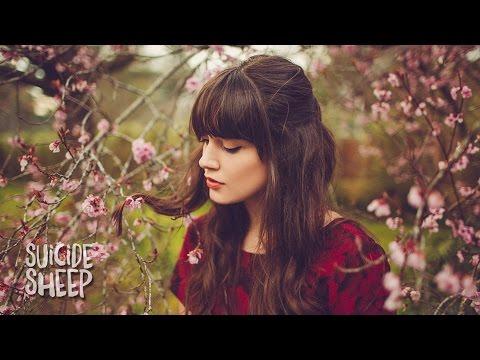 Wafia Heartburn music videos 2016