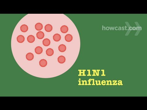 How To Prevent and Recognize Symptoms Of Swine Flu