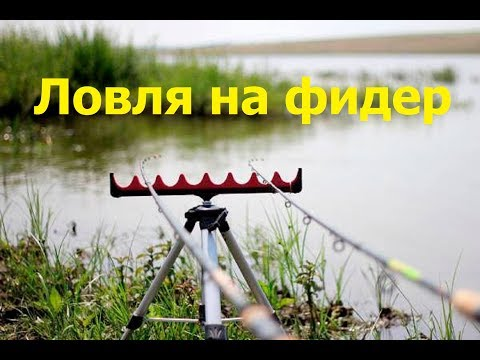 Рыбалка на реке Сакмара.Ловля на фидер Язь,Голавль,Подуст.Сентябрь 2017.