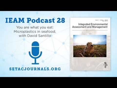 IEAM Podcast 28: You are what you eat: Microplastics in seafood. with David Santillo