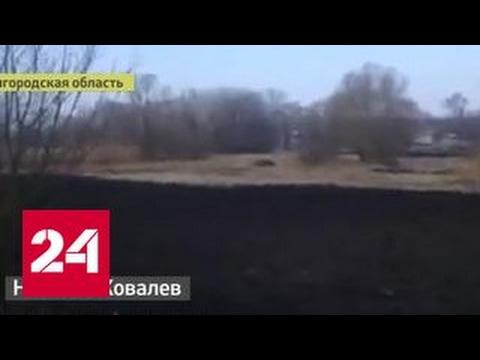 От украинских взрывов в России трясутся окна. Видео очевидца