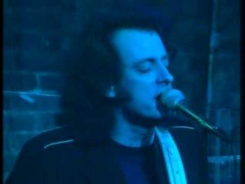 Tommy James&the Shondell crytal Blue Persuasion video