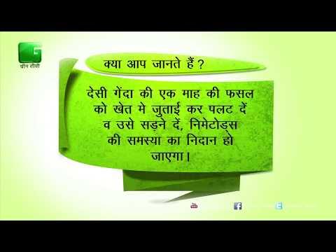 Green Gyan- Kya Aap Jante Hain- Fact 4 Green TV