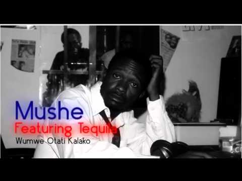 Mushe Featuring Tequila - Wumwe Otati Kalako video