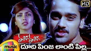 Tuneega Tuneega Telugu Movie | Dhoodi Pinja Full Video Song | Sumanth Ashwin | Rhea Chakraborty