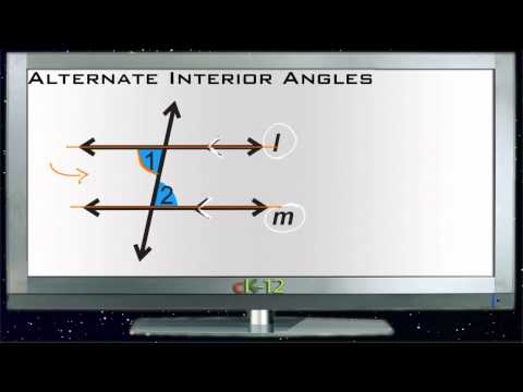 Alternate Interior Angles Principles - Basic