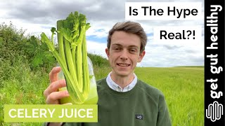 I DRANK CELERY JUICE FOR 90 DAYS ???? here's what happened ???? IBD Healing
