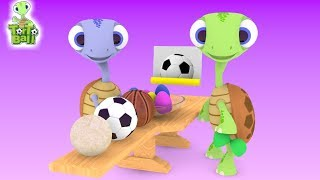 Turtle Egg Surprise Sport Ball For Children and Kids | Torto Ball