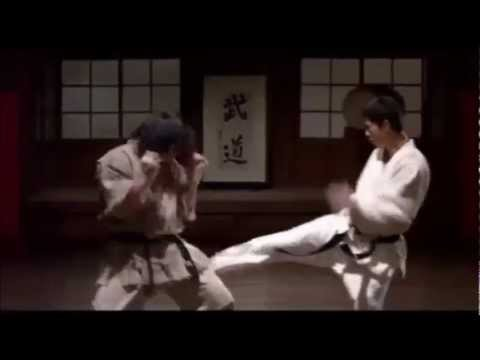 Music Video - Fighter in the Wind (Kyokushin Karate) Image 1