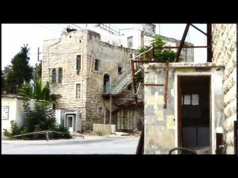 sin with sebastian Interview (Radio Sama Palestine)