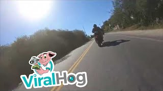 Accident on the Camino del Cuadrado || ViralHog