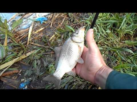 ютуб видео рыбалка на северском донце
