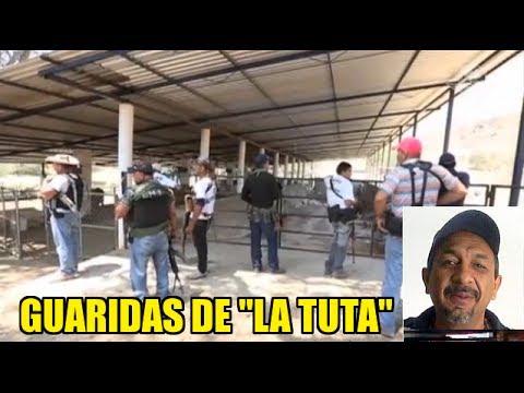 """Guaridas de """"La Tuta"""" en Arteaga, Michoacán"""