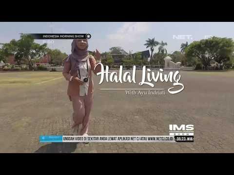 Halal Living : Berburu Ikan Manyung di Indramayu