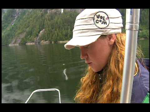 Pt 2 GGW 1 Ketchikan Alaska Fishing with Classic Alaska Charters Video